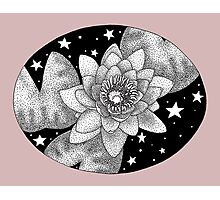 Midnight Ink Water Lily Photographic Print