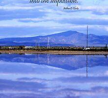 Reflections by Julia Harwood
