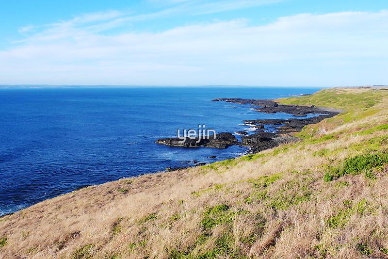 By the sea - Penguin Island Australia by yejin