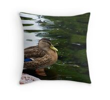 a fowl beauty-Crown Plaza pond Nashua Throw Pillow