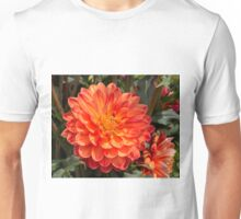 Dahlia In Bloom 1 Unisex T-Shirt