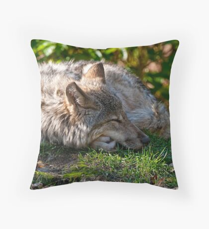 Sleeping Timber Wolf Throw Pillow