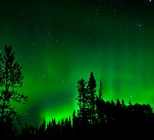 September 2010,Auroras by peaceofthenorth