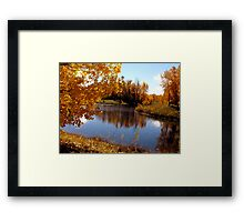 Autumn Beauty Framed Print