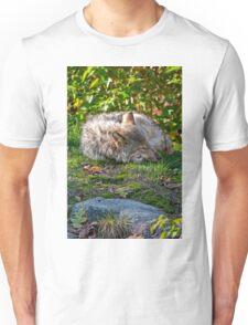 Sleep Well my Friend T-Shirt