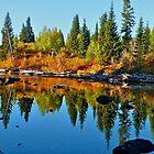 Fall Reflections by Luann wilslef
