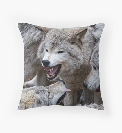 Do you get it now! Throw Pillow