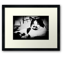 Rudy, Ruler of the Roost Framed Print