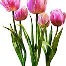 Pink Pastel Tulips by Susan Savad