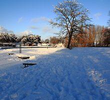 Winter Scene by Paul Bettison