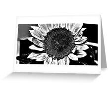 Sun Flower Suit Greeting Card