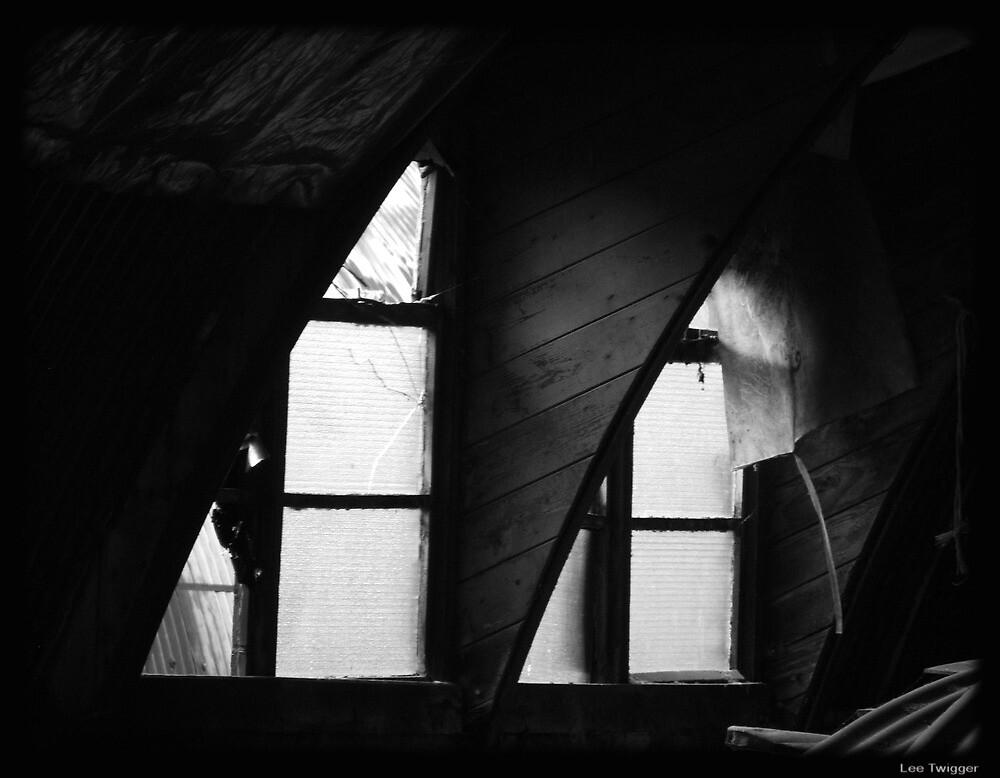 Forgotten Window by Lee Twigger