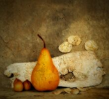 Golden Pear by Barbara Ingersoll