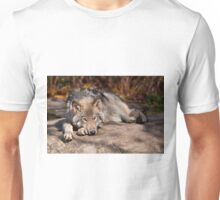 Timber Wolf At Rest Unisex T-Shirt