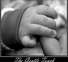 The Gentle Touch by Paul  McIntyre