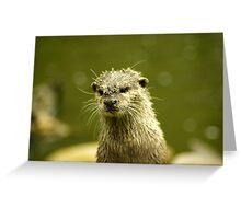 """Little muddy - """"I just *had* a bath!"""" Greeting Card"""