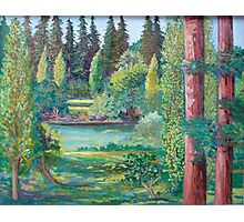 Russian River Photographic Print