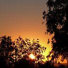 Sunset by PurpleDonna
