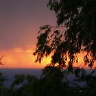 Sun and sky! by PurpleDonna