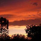 Sunset 3 by PurpleDonna