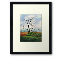 The Elm and The Red Bird Framed Print