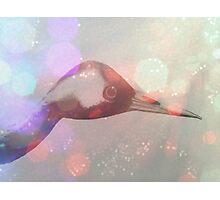 Japanese Crane in Bokeh  Photographic Print