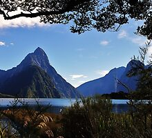mitre peak, south island by rina  thompson