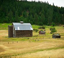 Country Barn by Robin  Koster