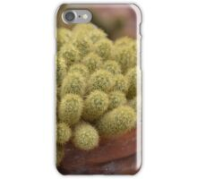 Cacti or Fuzzy Pickles? iPhone Case/Skin