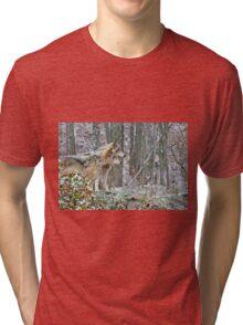 Timber Wolves Tri-blend T-Shirt