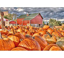 Pumpkin Season Photographic Print