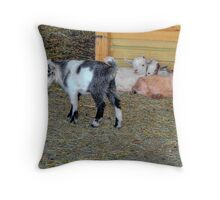 Baby Goats Throw Pillow