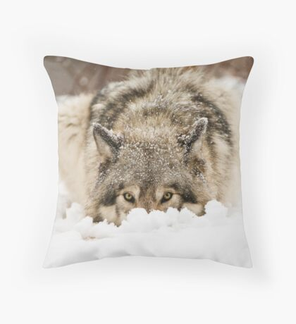Whose The Pretty Puppy? Throw Pillow
