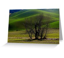 Hills in Green Greeting Card