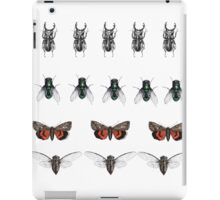 Repeated insect illustration  iPad Case/Skin