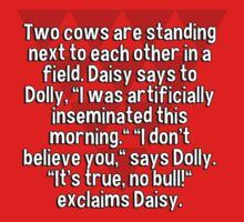 "Two cows are standing next to each other in a field. Daisy says to Dolly' ""I was artificially inseminated this morning."" ""I don't believe you'"" says Dolly. ""It's true' no bull!"" exclaims Daisy. by margdbrown"