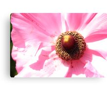 flower attachment Canvas Print