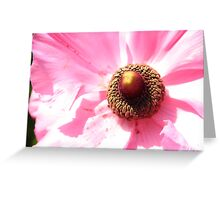 flower attachment Greeting Card