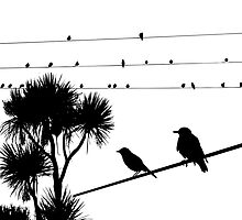 Birds on a wire by Design4uStudio