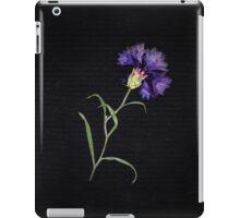 Withered Cornflower Flower In Black iPad Case/Skin