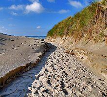 To the beach by Adri  Padmos
