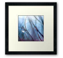 Twigs Framed Print