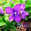 little violets  by LoreLeft27