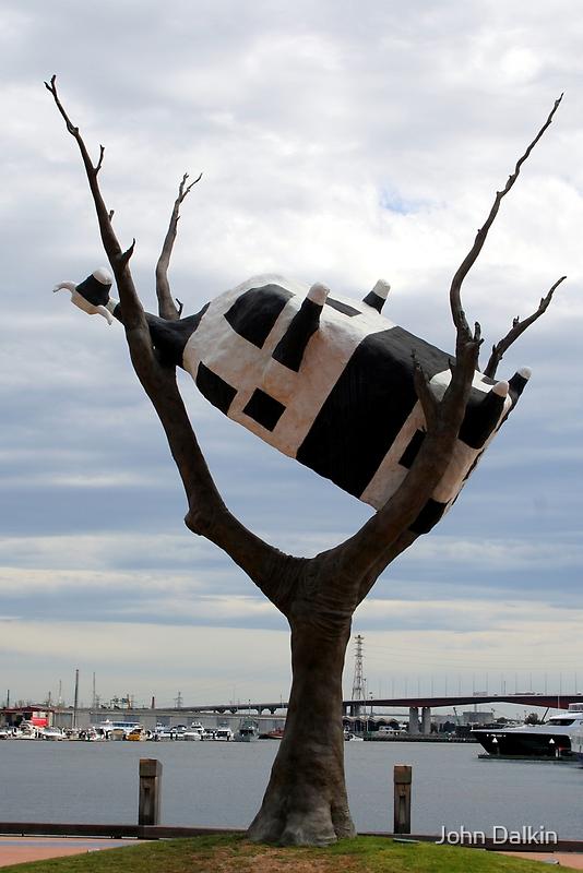 Cow in tree by John Dalkin