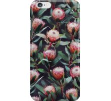 Evening Proteas - Pink on Charcoal iPhone Case/Skin