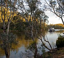 Murray River 1 | Echuca | Victoria by Bill Fonseca