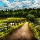 Country - Every journey starts with a path  by Mike  Savad
