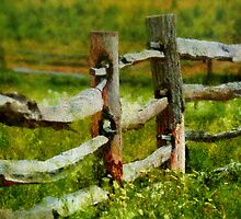 Country - The old fence post  by Mike  Savad