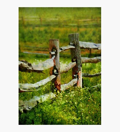 Country - The old fence post  Photographic Print