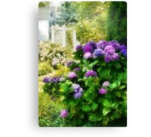 Flower - Lovely Hydrangea  Canvas Print